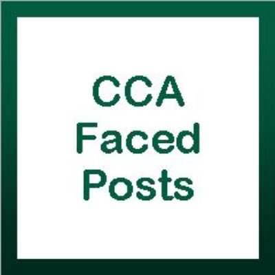 CCA Faced Posts